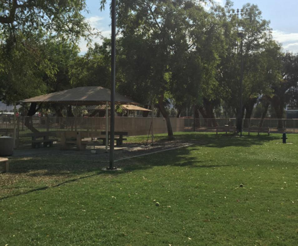 Palm Desert Civic Center Dog Park