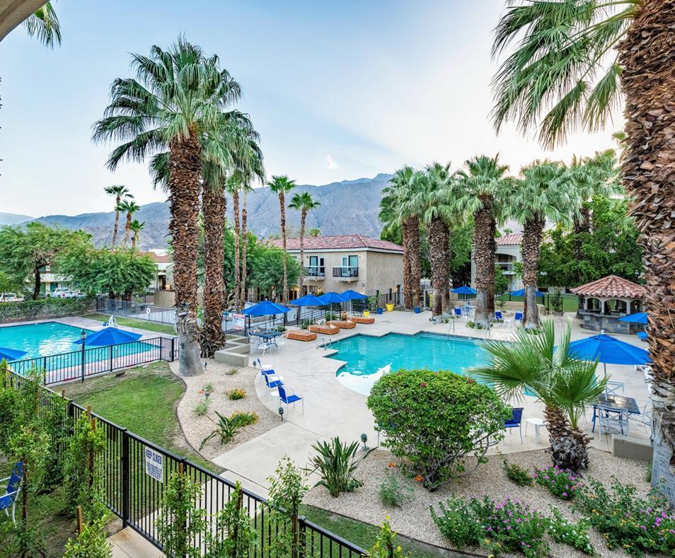 Ivy Palm Resort pool view