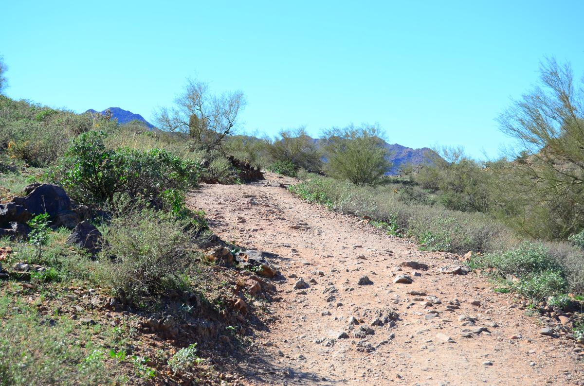 Maricopa Trail San Tan Mountain Regional Park
