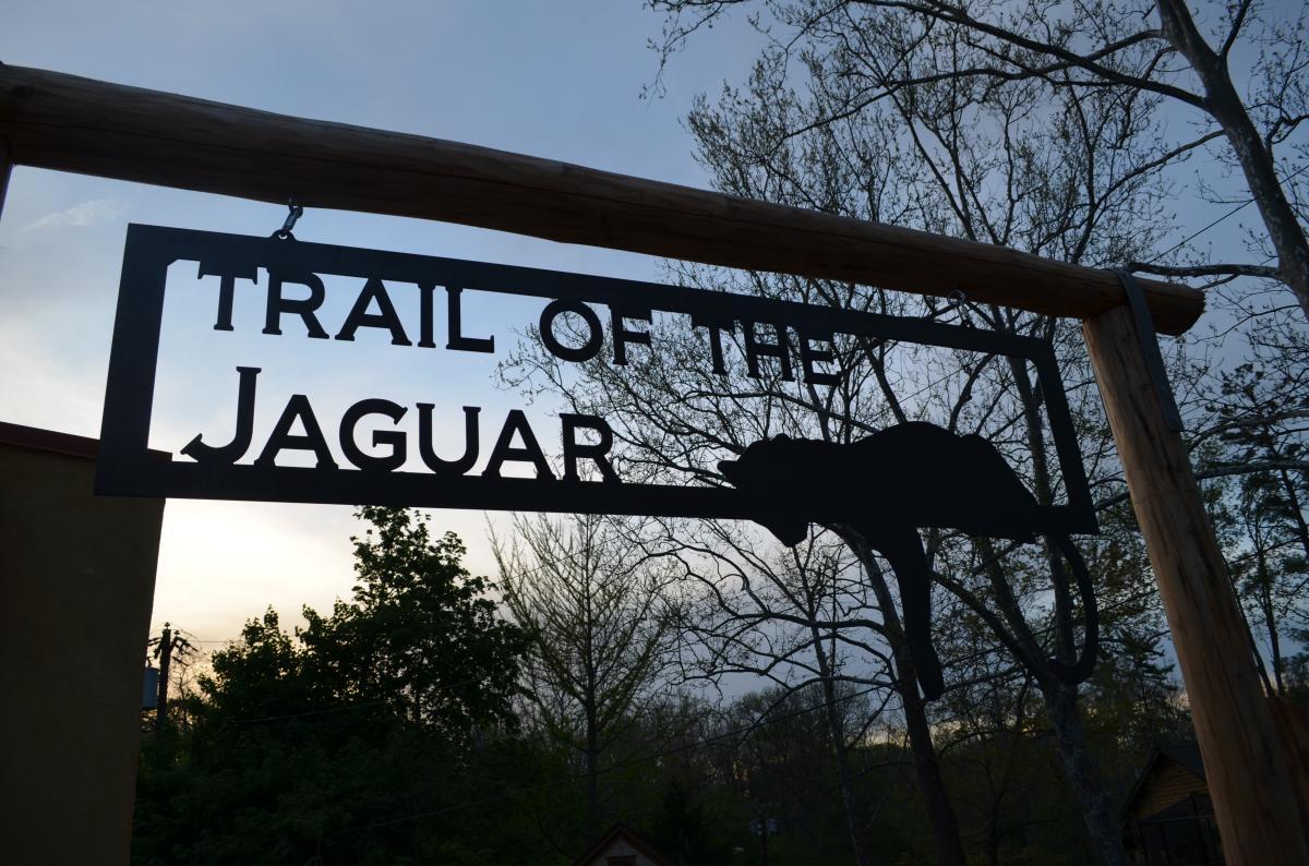 Elmwood Park Zoo Trail of the Jaguar