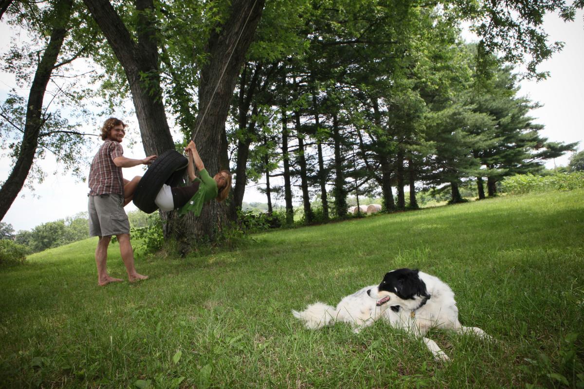 Anchor Run Farm Engagement, Devon John Photography