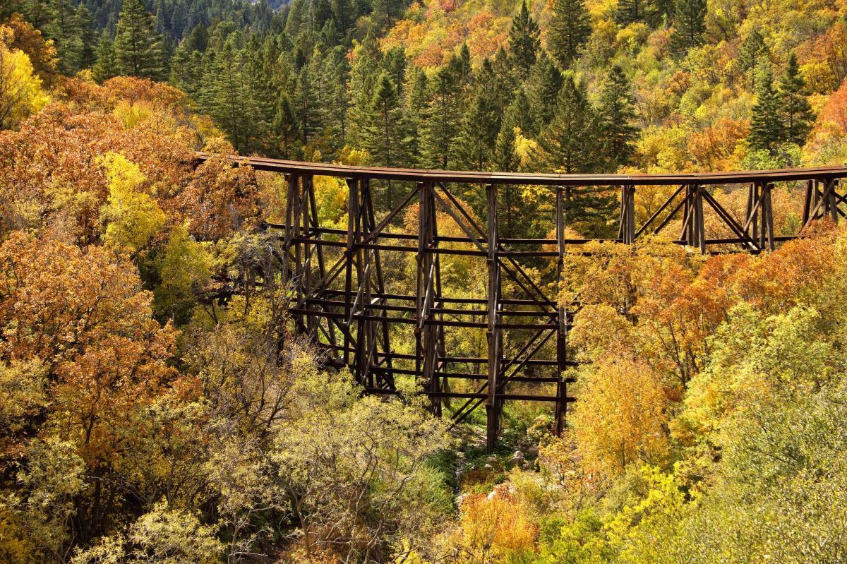 Lincoln Wilderness