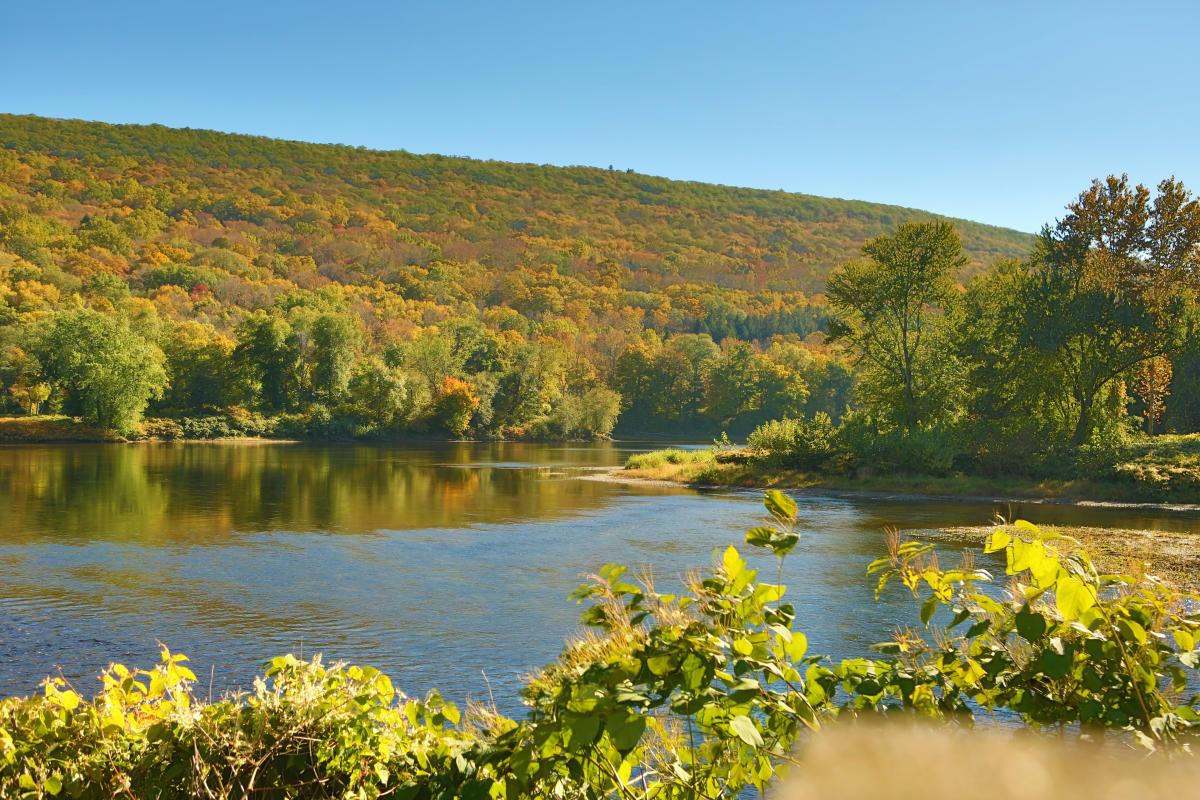 Scenic Delaware River