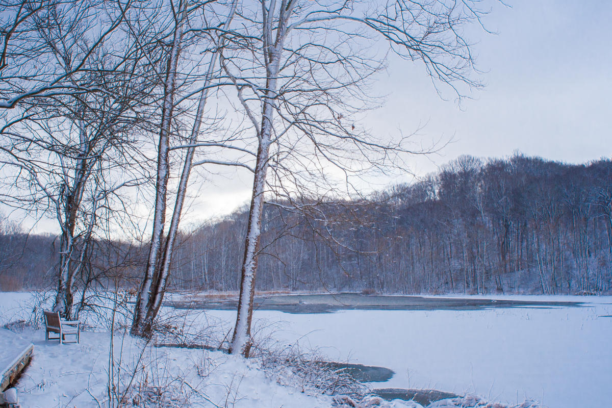 Griffy Lake Winter