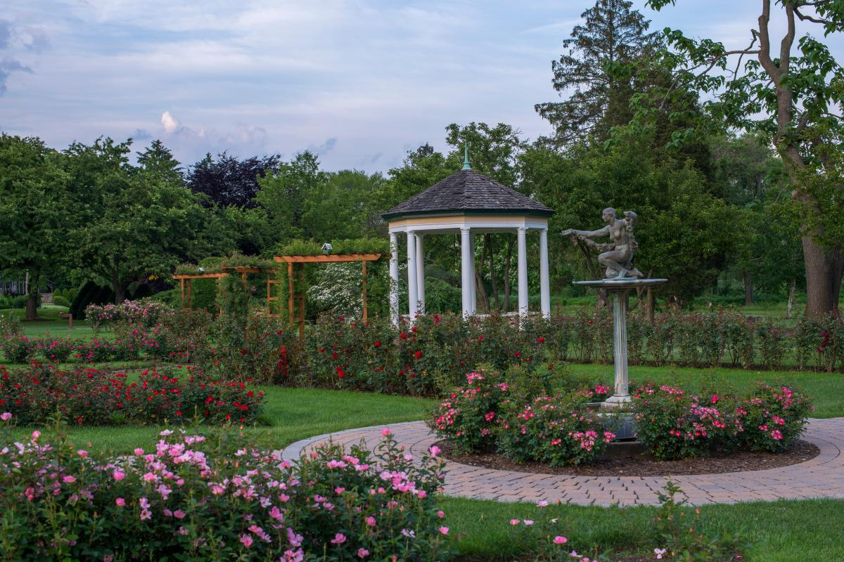Allentown Rose Garden