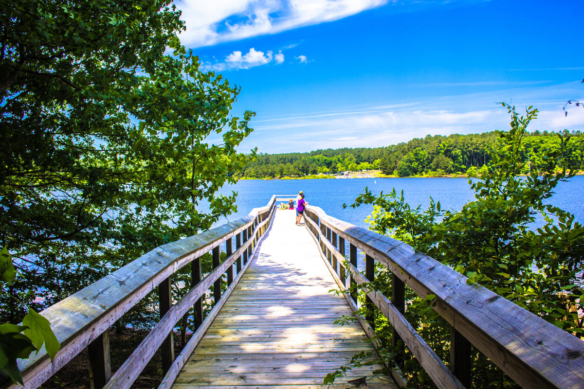Top 10 Things To Do In Wake Forest Nc