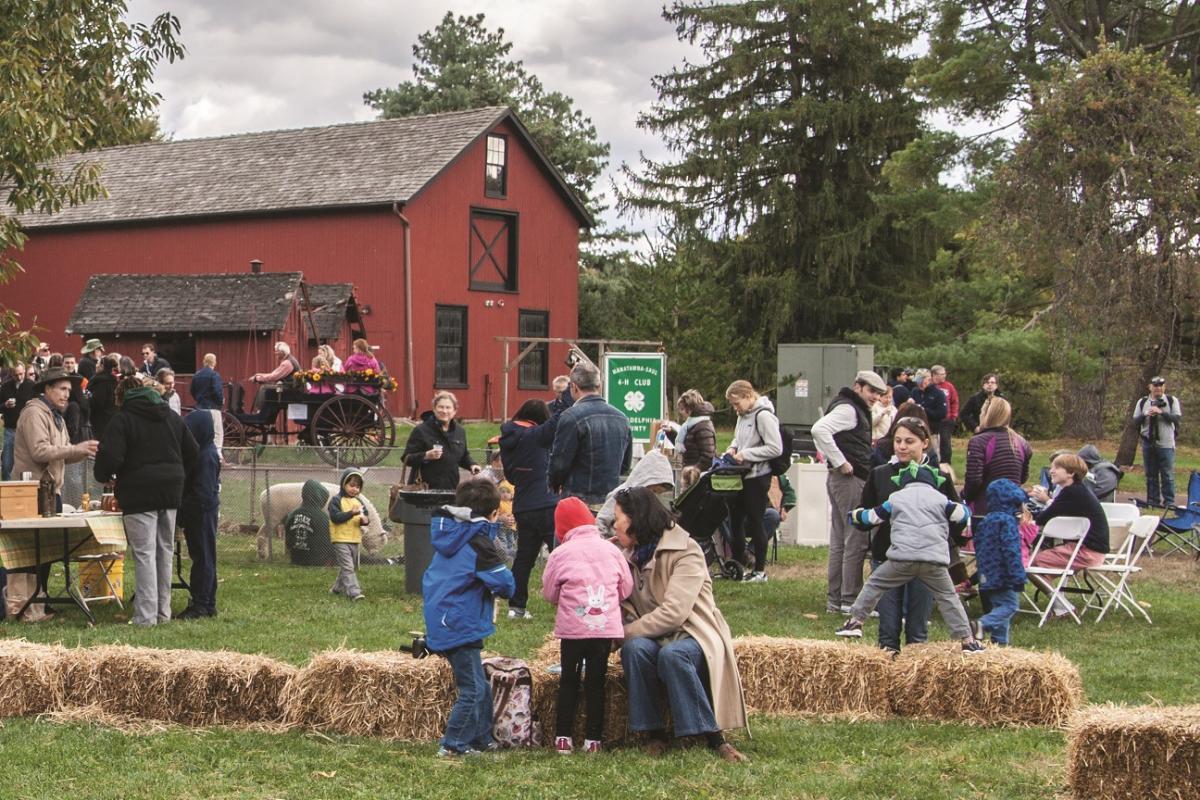 Bloomfield Farm Day