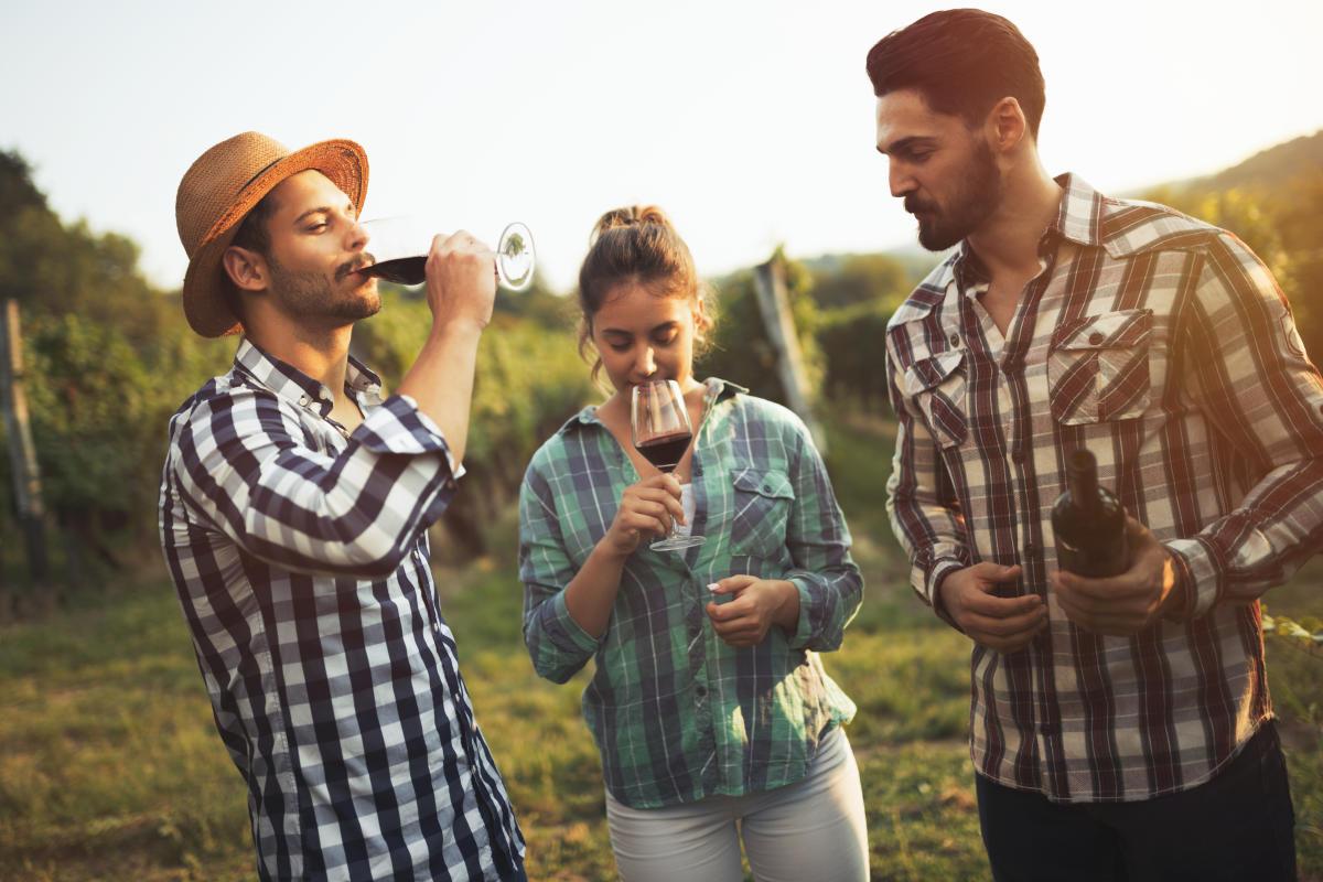 Vineyard Wine