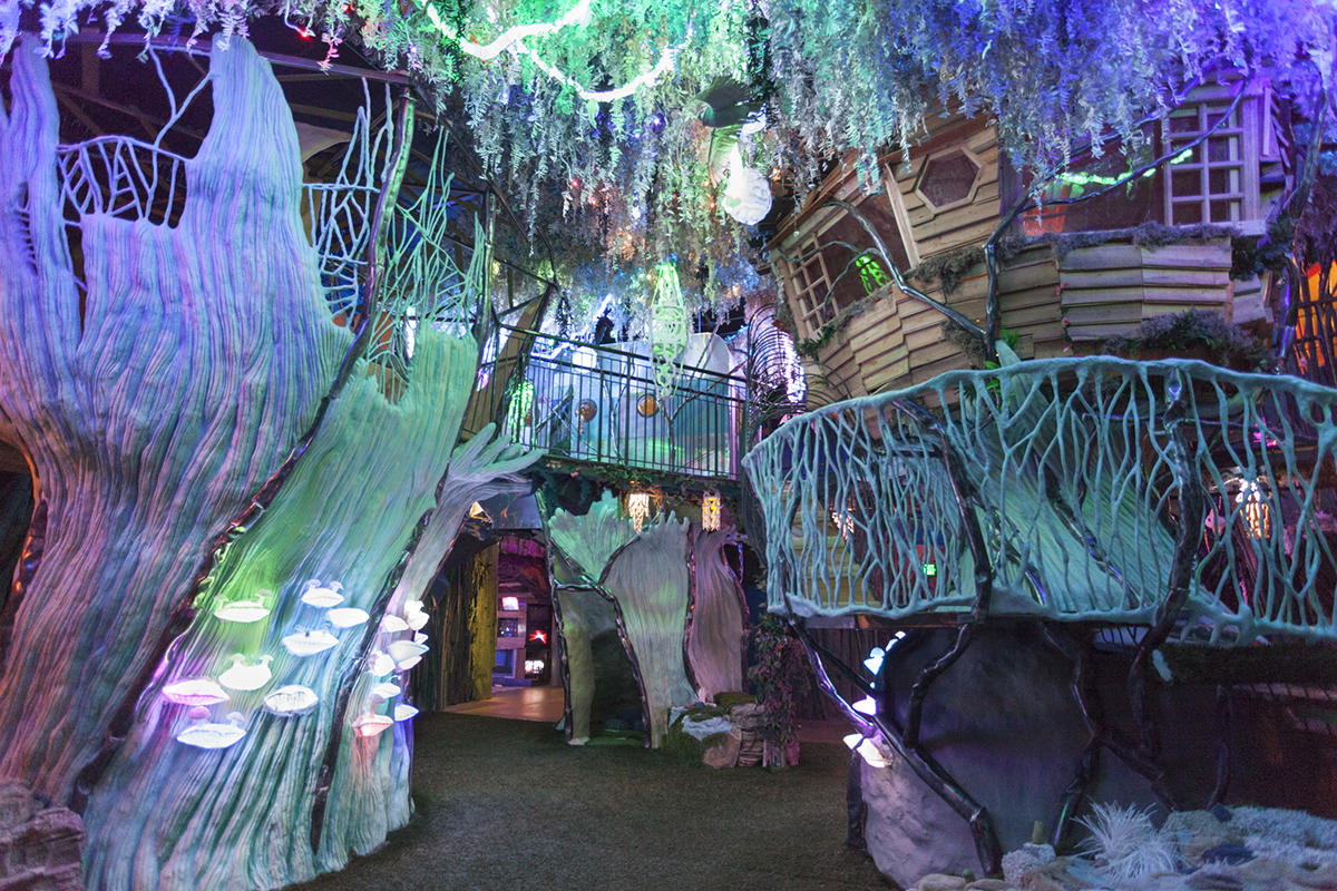 Meow Wolf; The House
