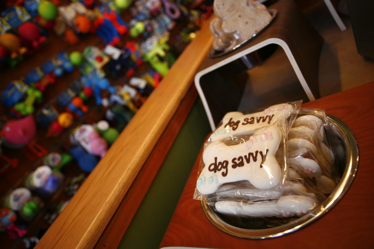 Dog Savvy in Denver's Larimer Square
