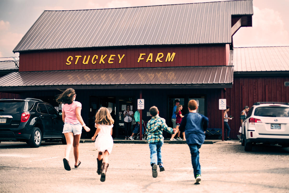 Stuckey Farm