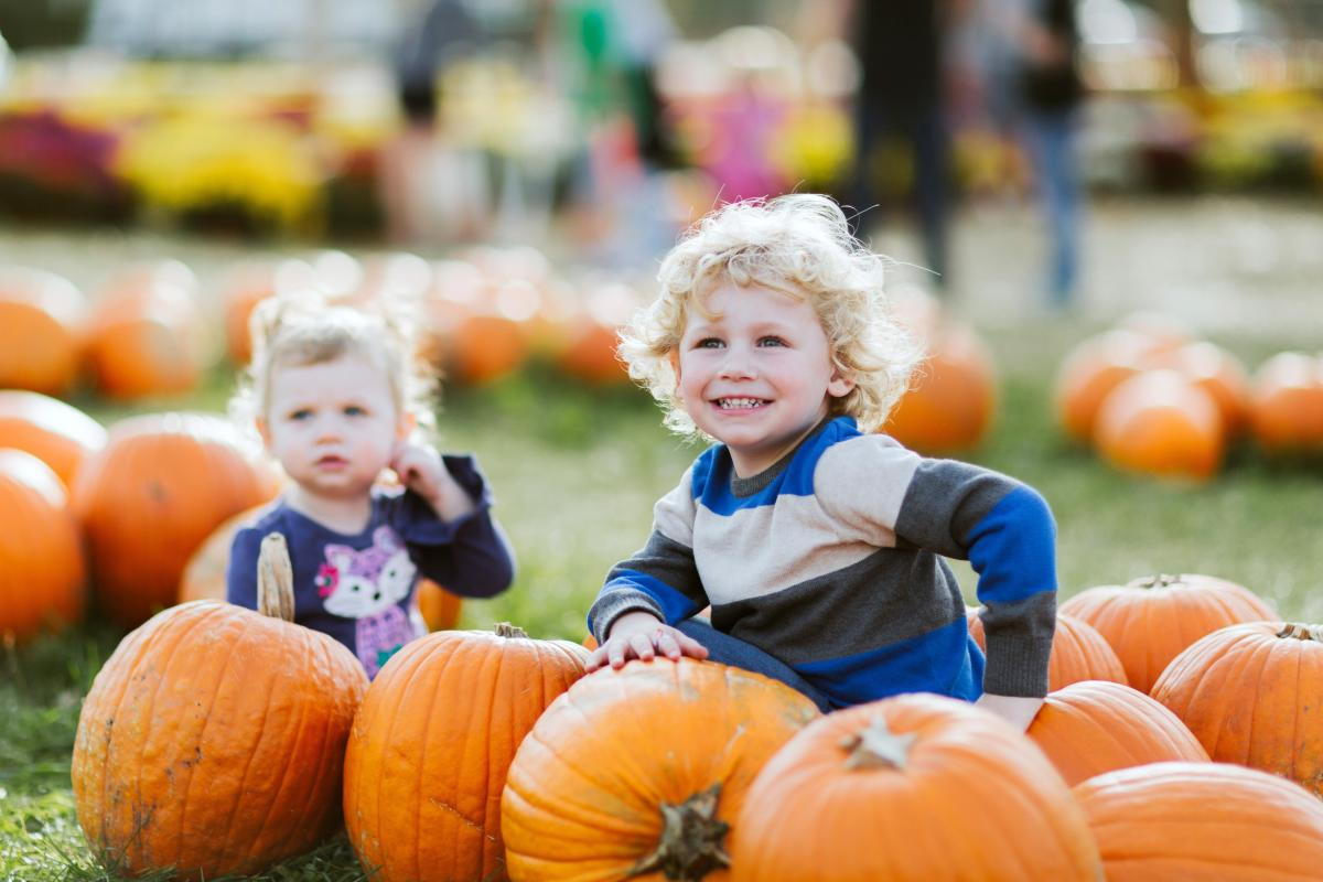 Family fall fun at Sekapp Orchard in Rochester MN