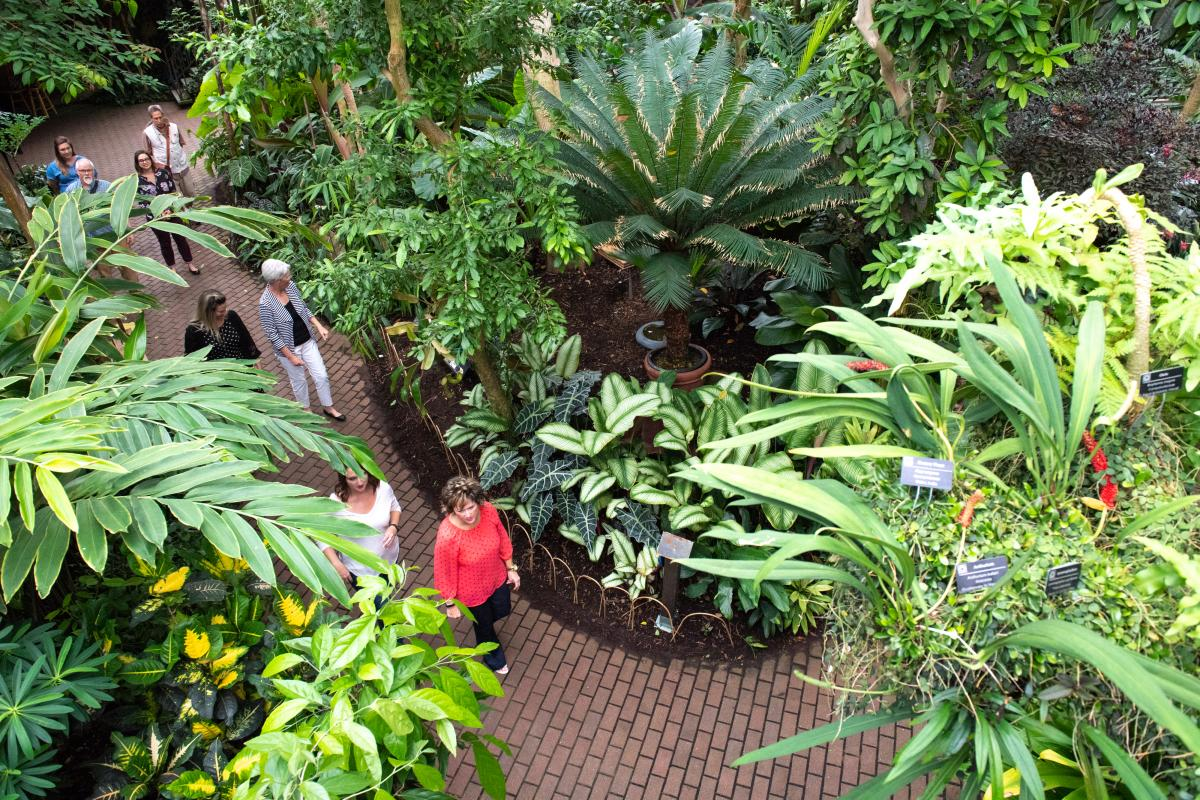 Aerial photo of Bolz Conservator during the Garden to Glass: Totally Tropical experience