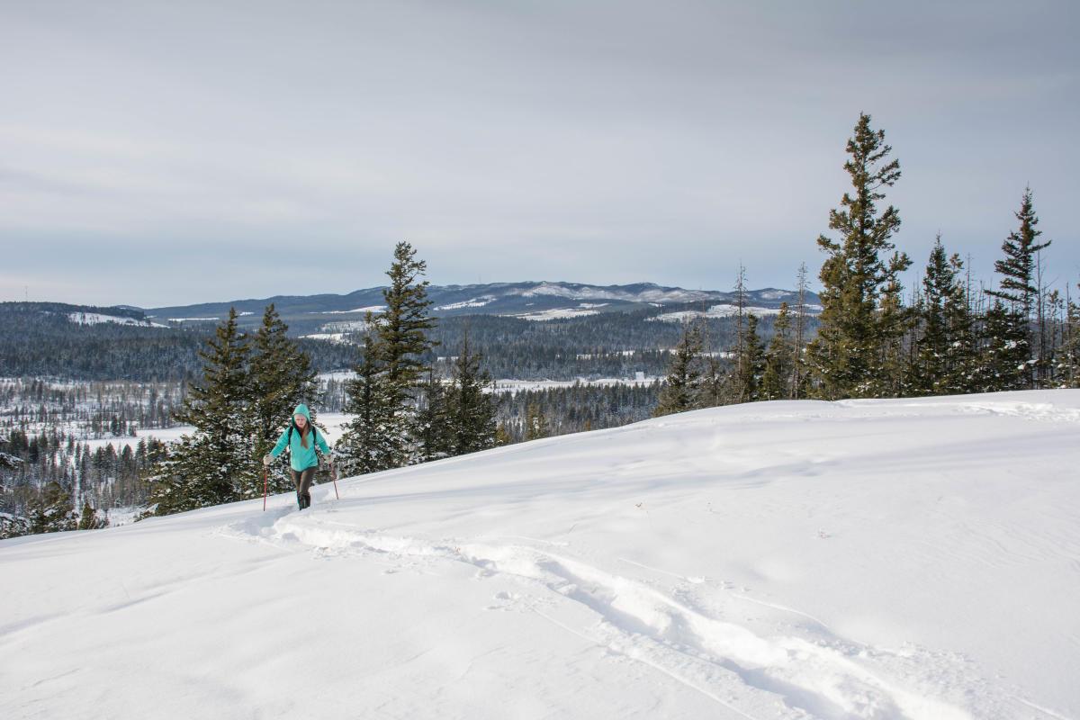 Snowshoe at Stake Lake