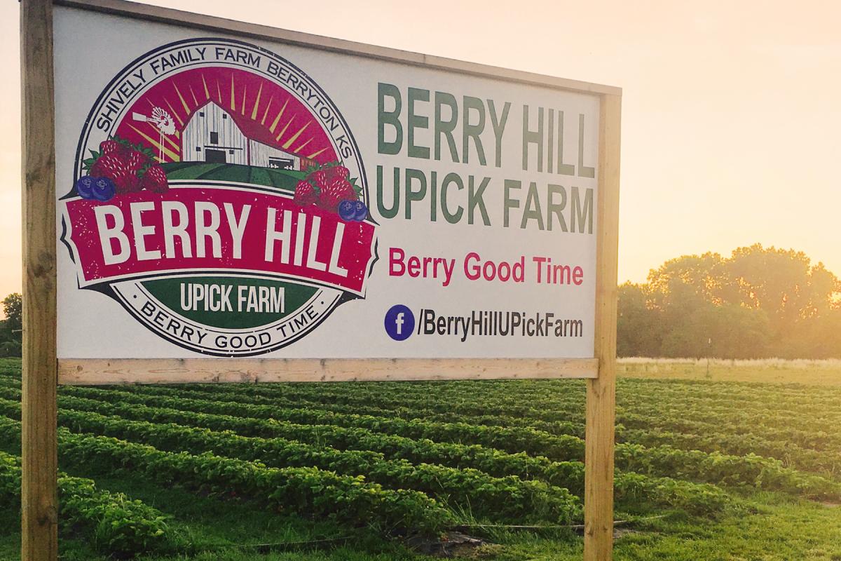 Berry_Hill_UPick_Farm