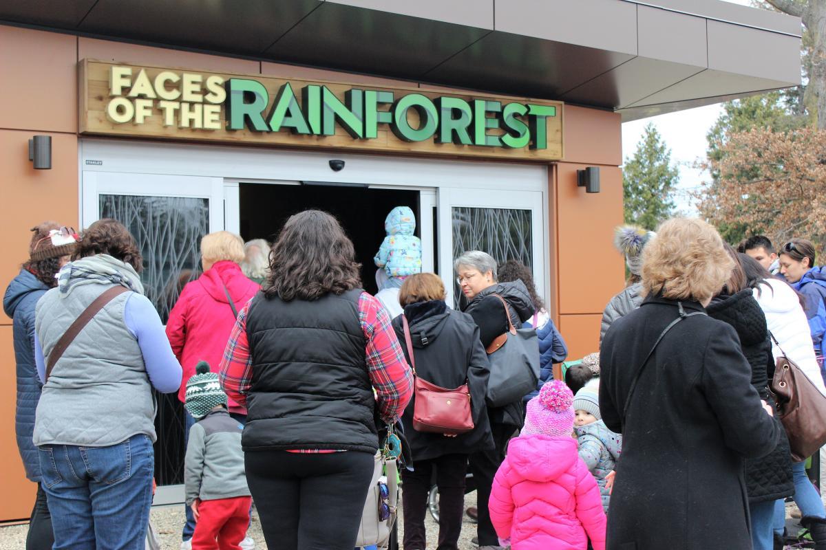 RWPZOO Rainforest Opening
