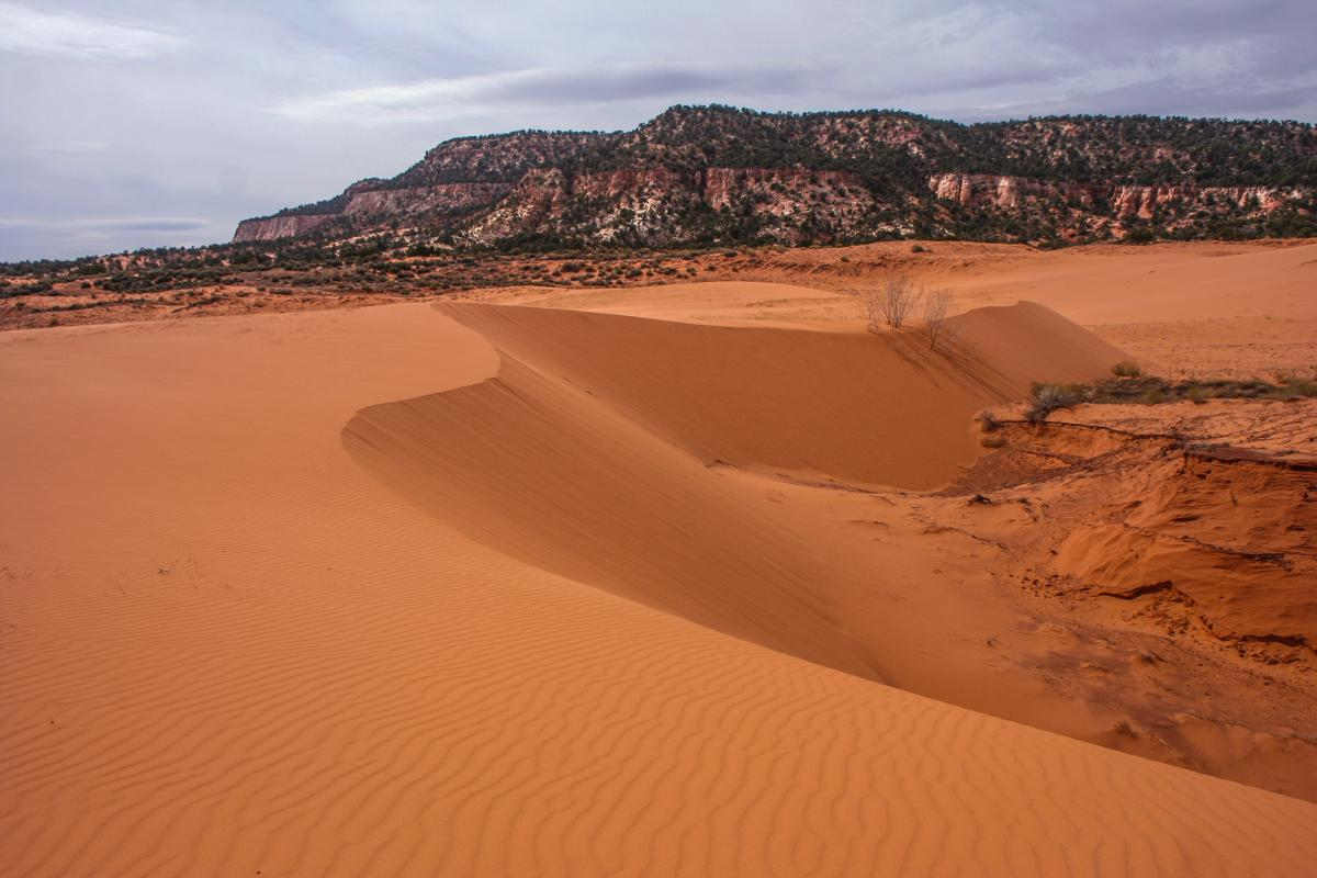 These sand dunes are so magical you might even find a Cave of Wonder