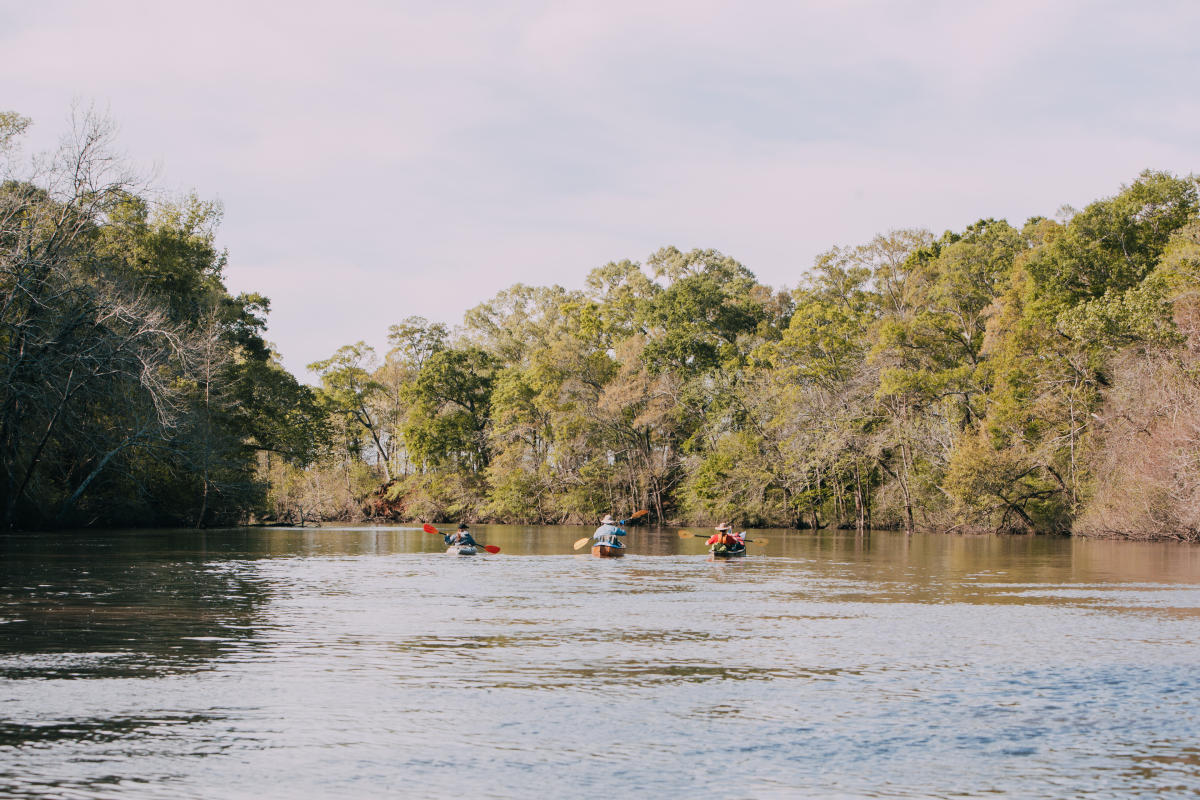 Paddlers on the Vermilion