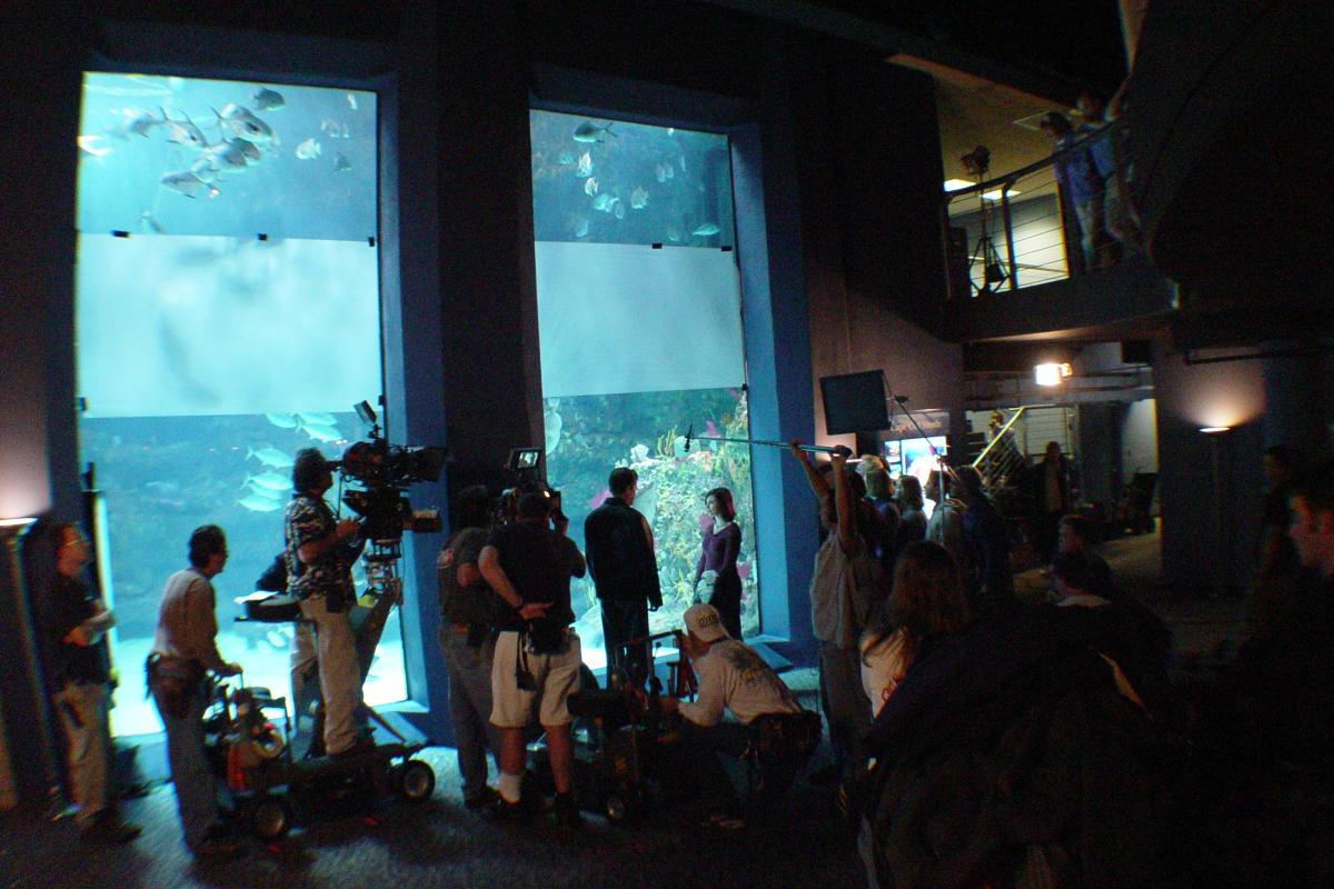 Dawson's Creek Films at Aquarium