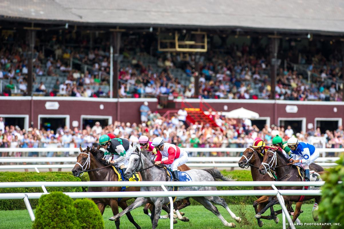 Horses running at Saratoga Race Course