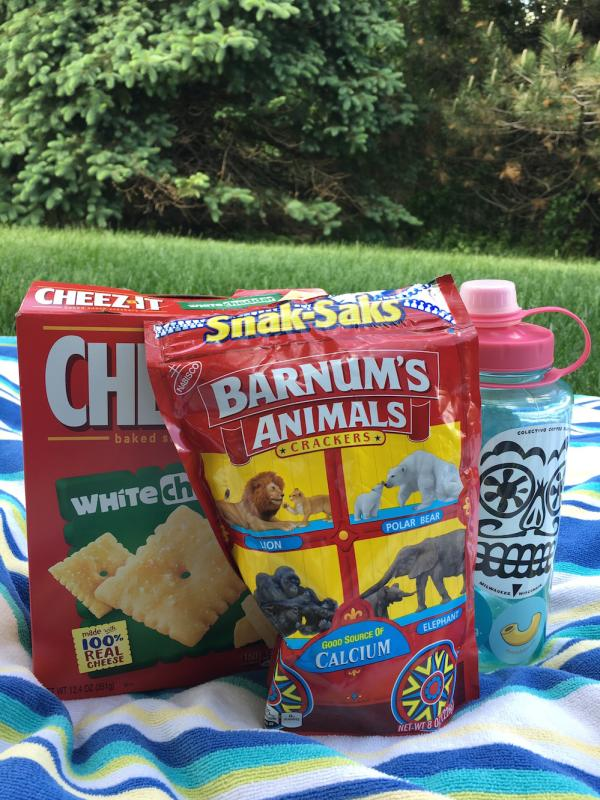 snacks and beverages picnic