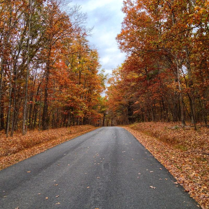 Country Roads - Albemarle County