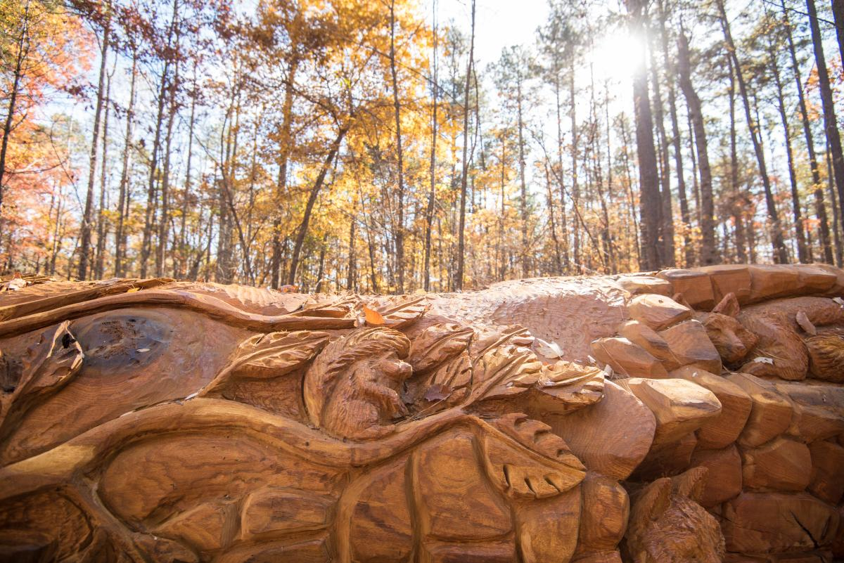 Umstead Chainsaw Art