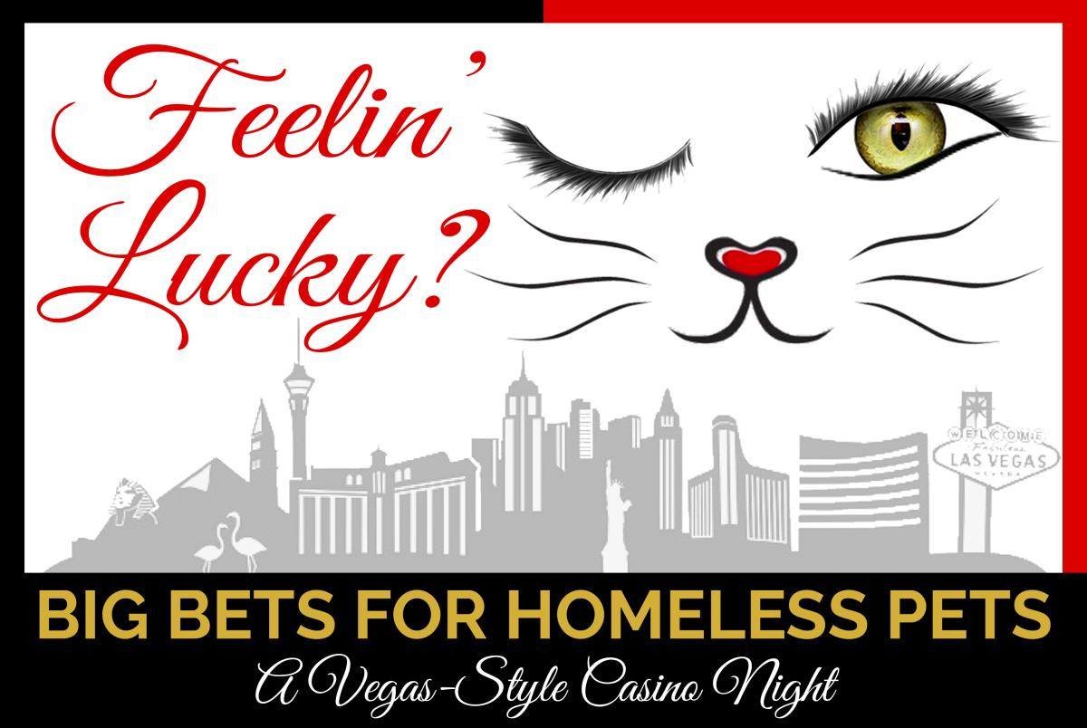 Big Bets for Homeless Pets