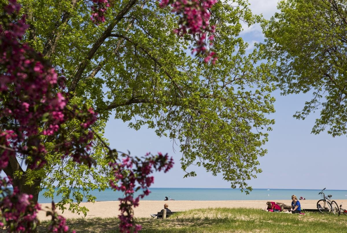 Chicago lakefront beach