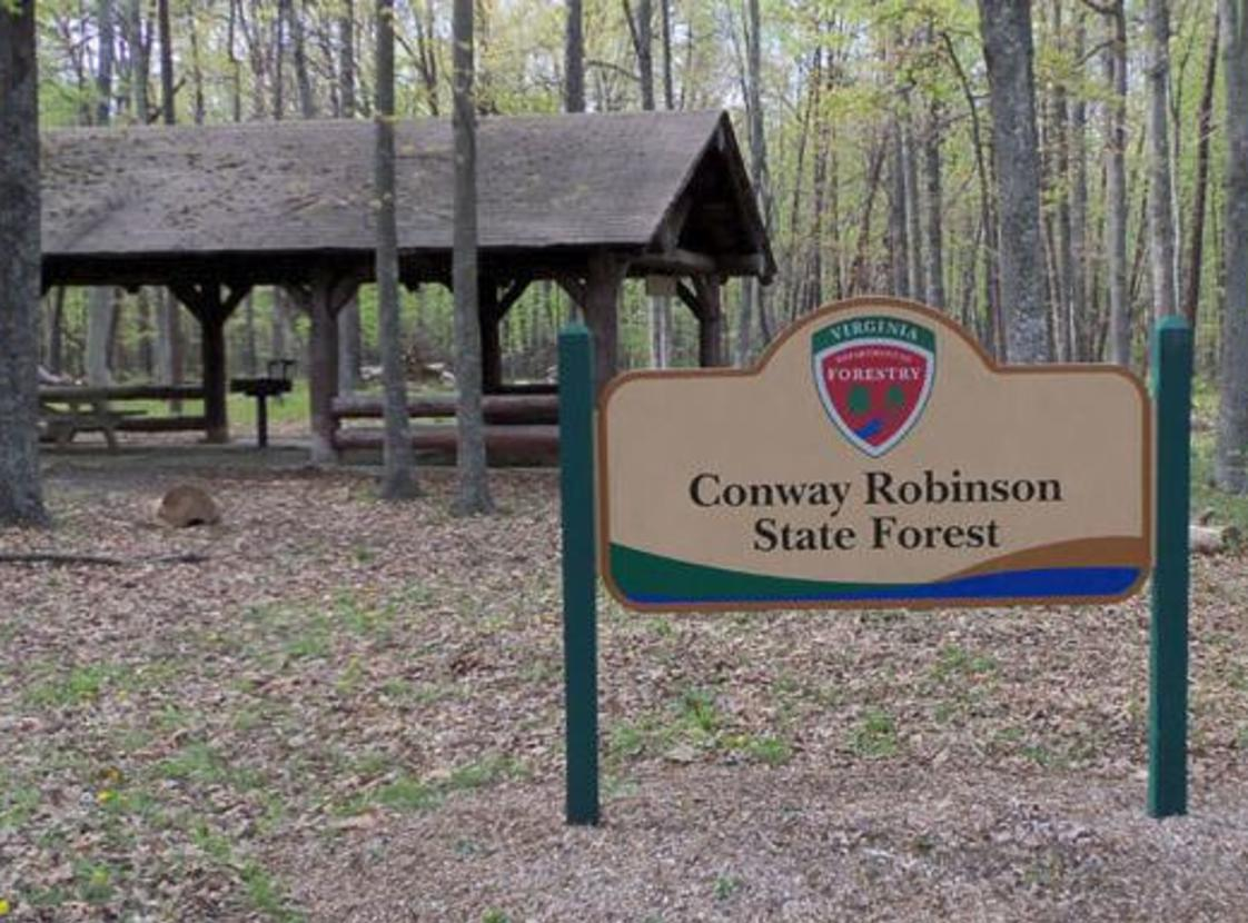 CONWAY-ROBINSON STATE FOREST