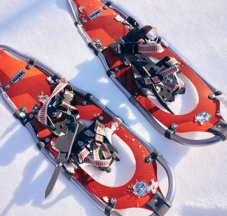 Snowshoes Stock
