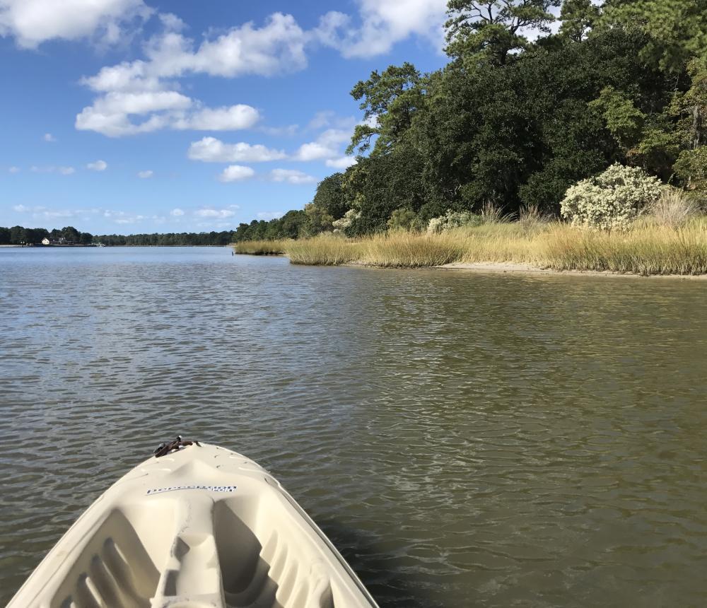 Kayaking tour First Landing State Park
