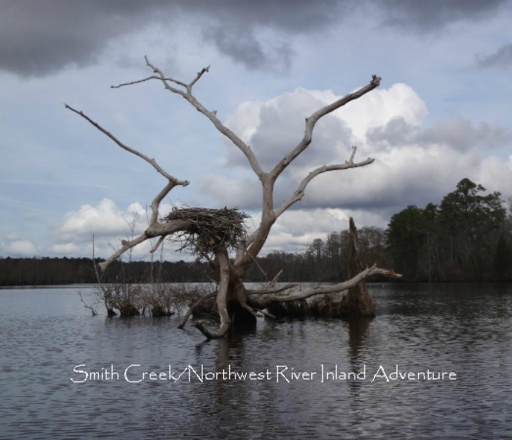 Smith_Creek_Osprey_Nest-560.jpg