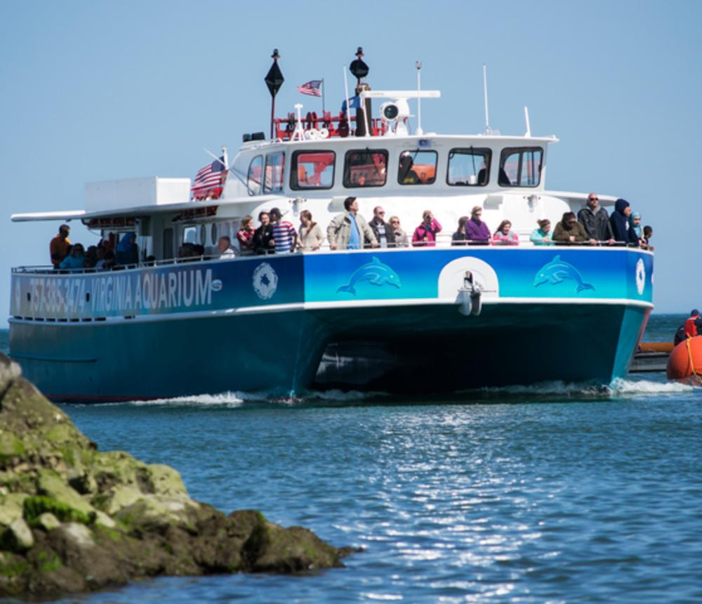 Virginia Aquarium Boat Tours