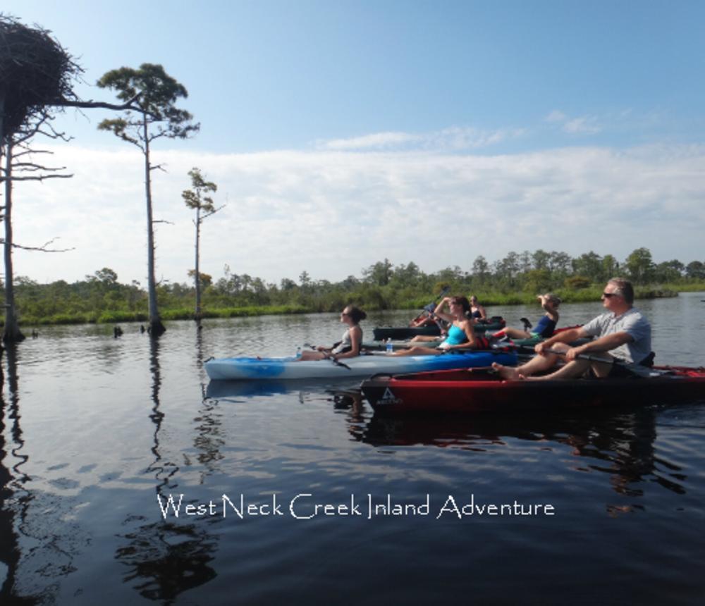 West_Neck_Creek_Inland_Adventure-56001.jpg