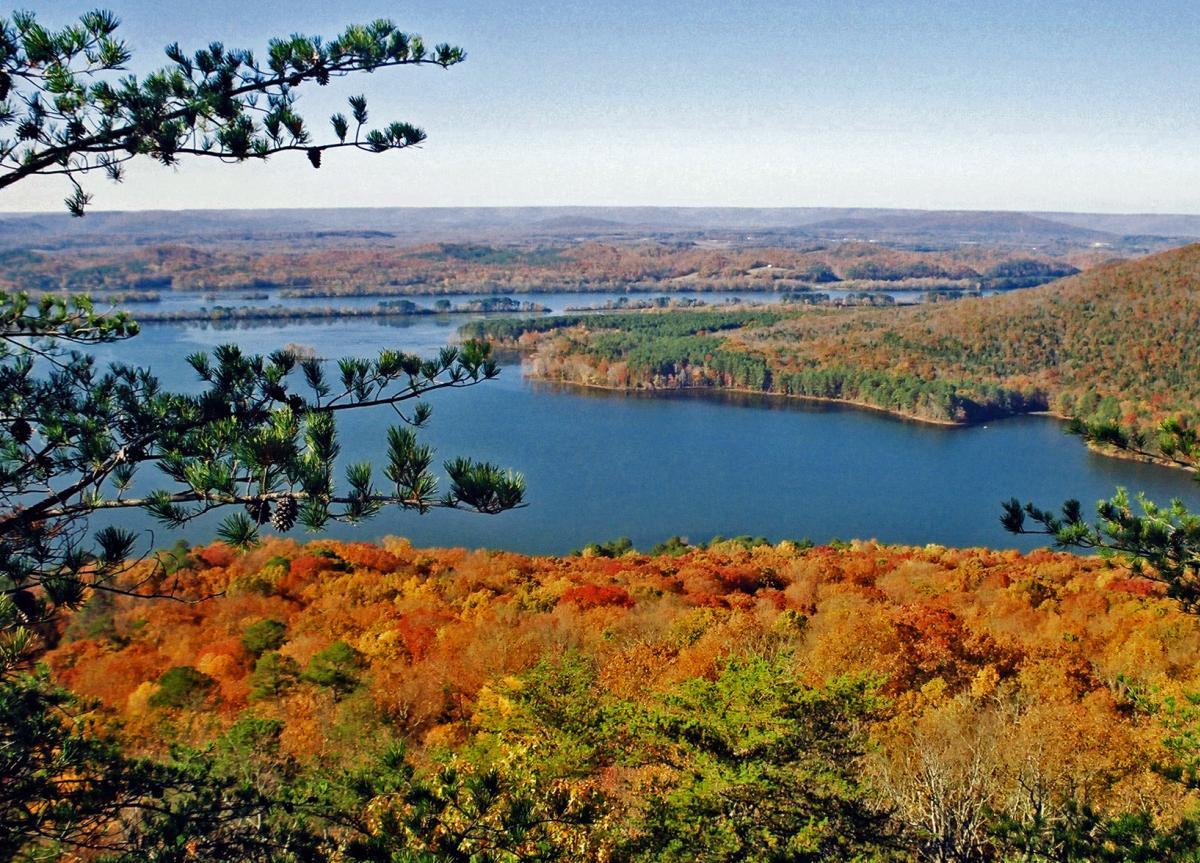 Jackson County Foliage
