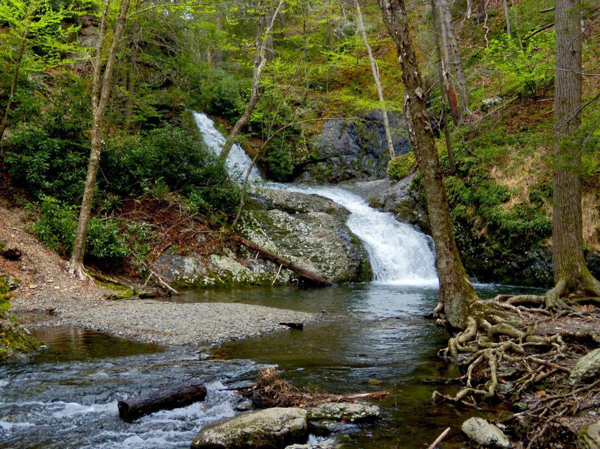 Tumbling Waters Trail at PEEC