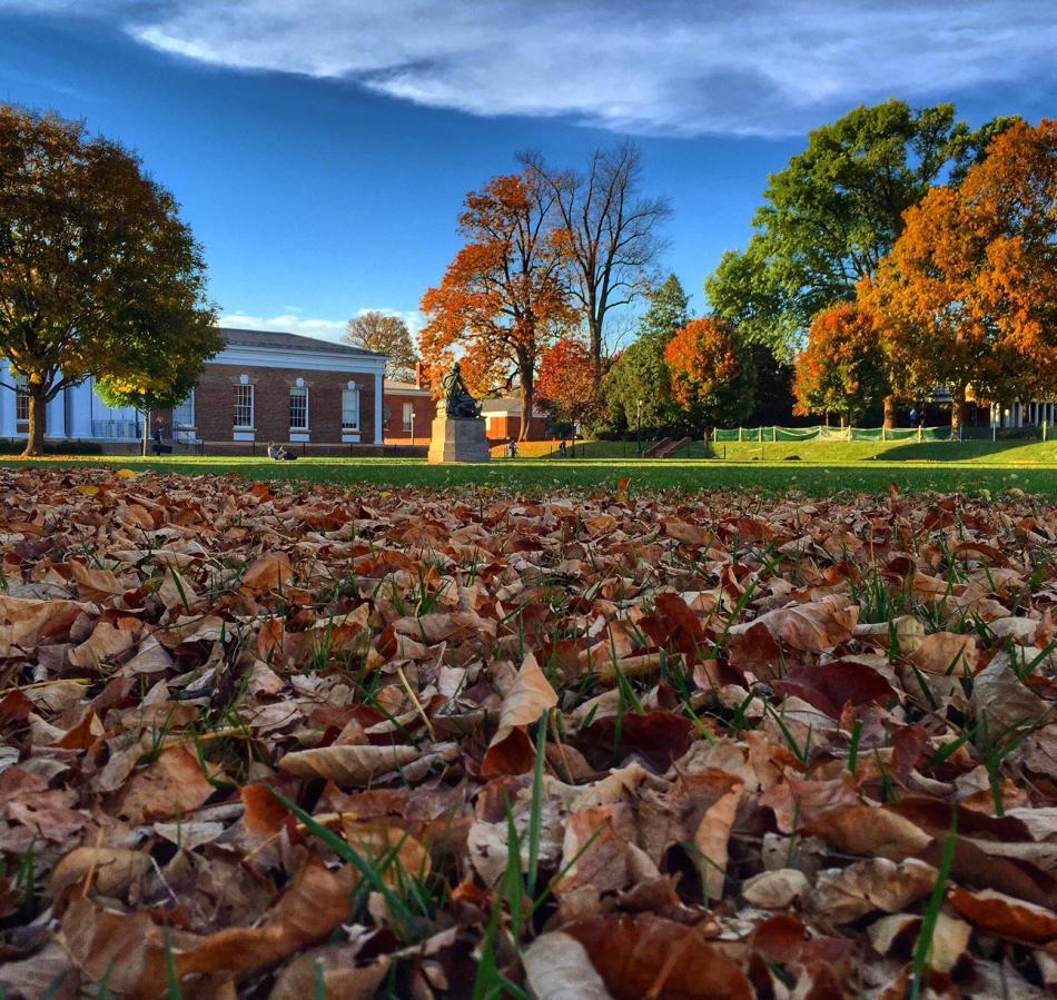 UVA Grounds in Autumn