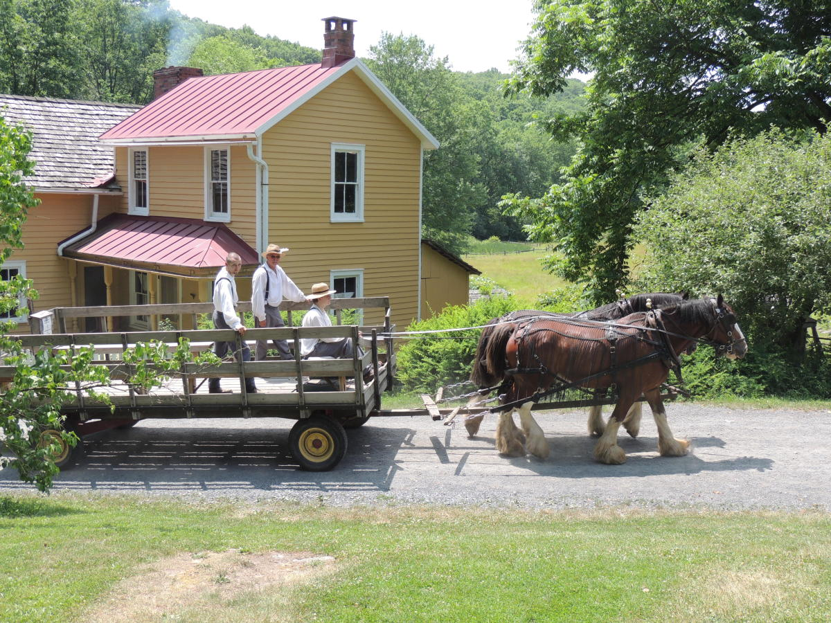 Horse-Drawn Wagon Ride past the Farmhouse at Quiet Valley