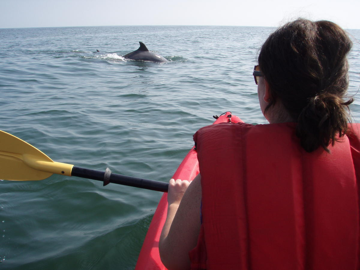 2011_Kayaking_with_Dolphin_1.JPG