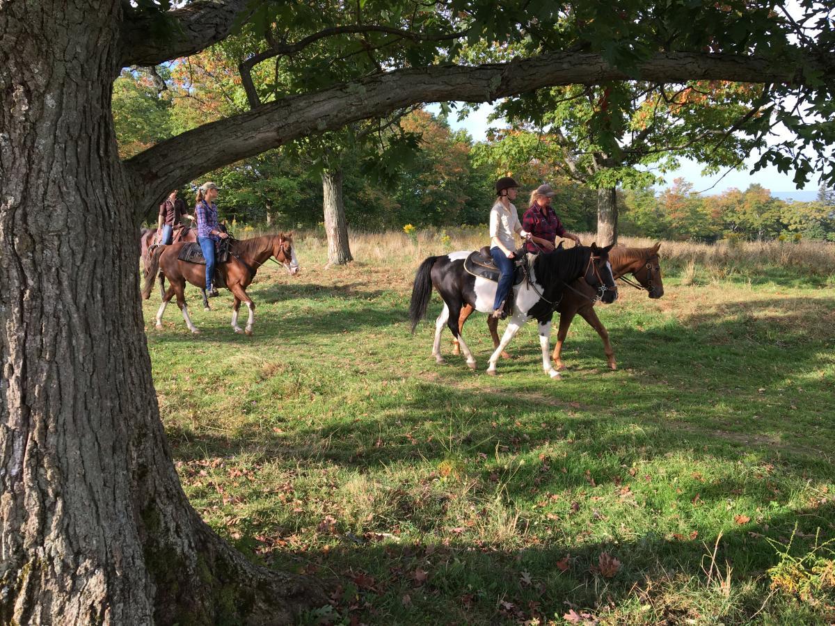 Horseback Riding in Finger Lakes National Forest