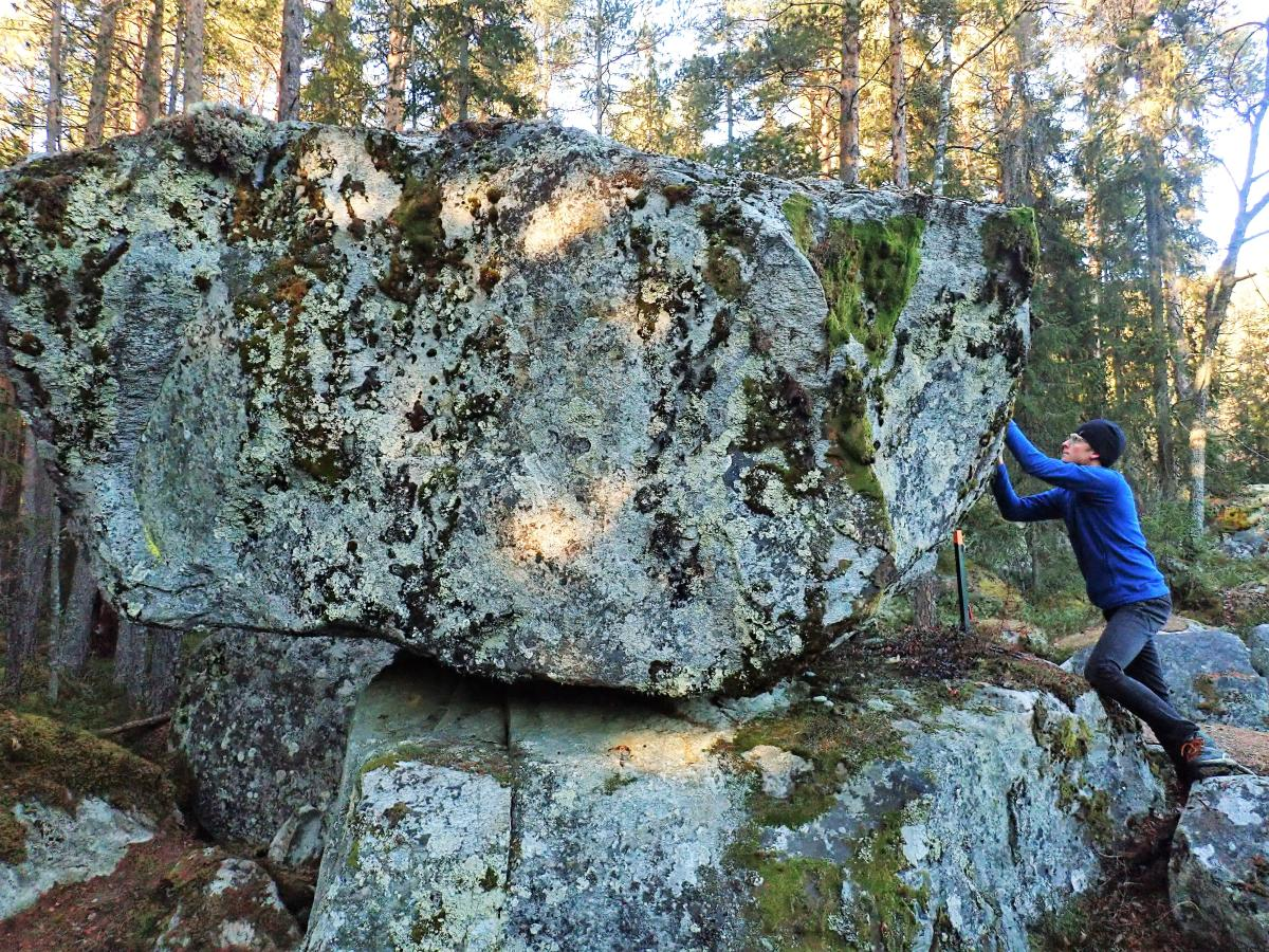 Ruggestein, Ål i Hallingdal