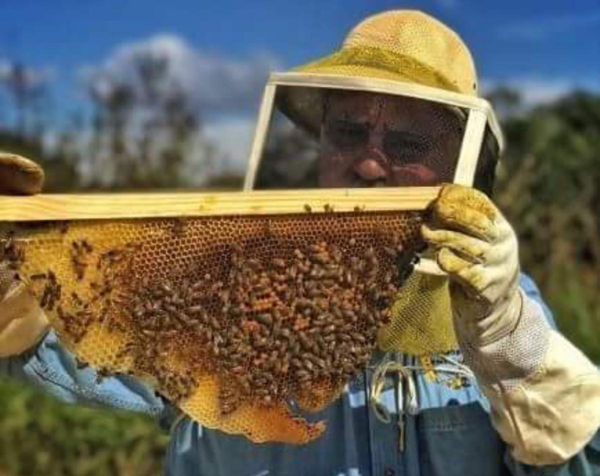 Farm Fusion bee keeper