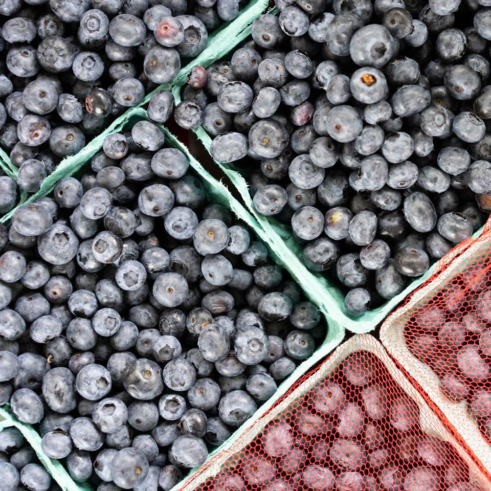 Blueberries Princeton Farmers' Market