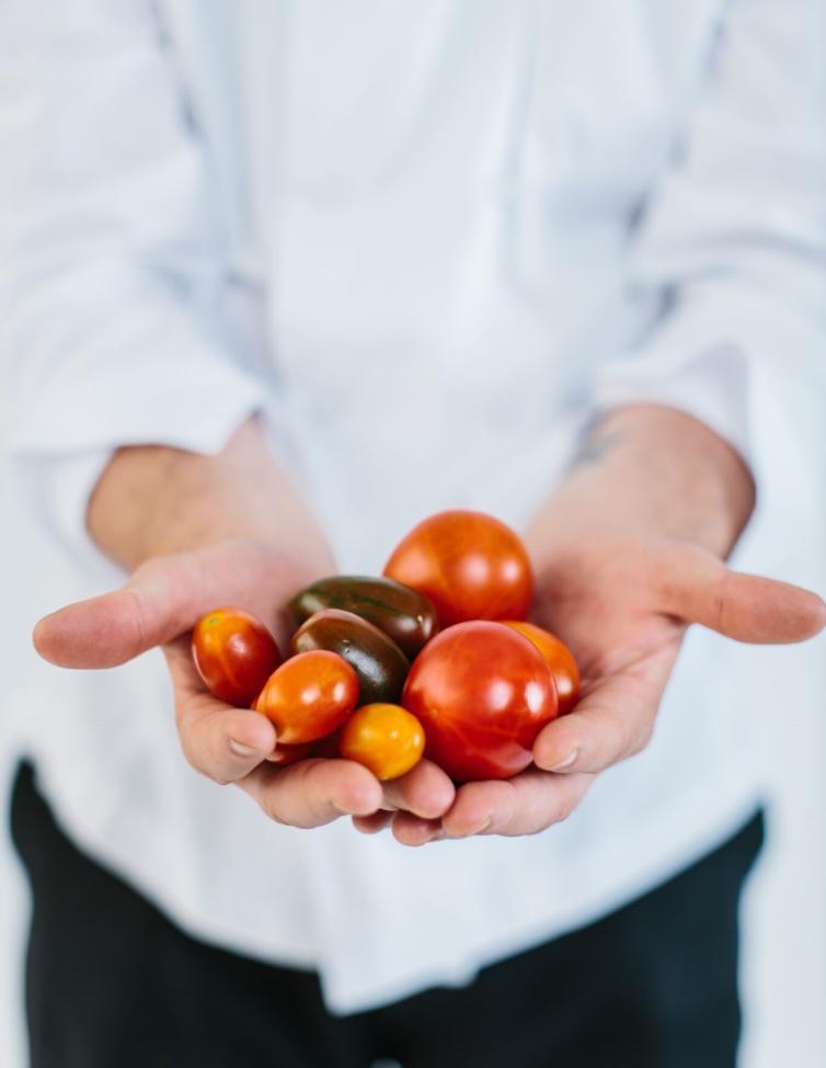 Michael Buffett Tomatoes
