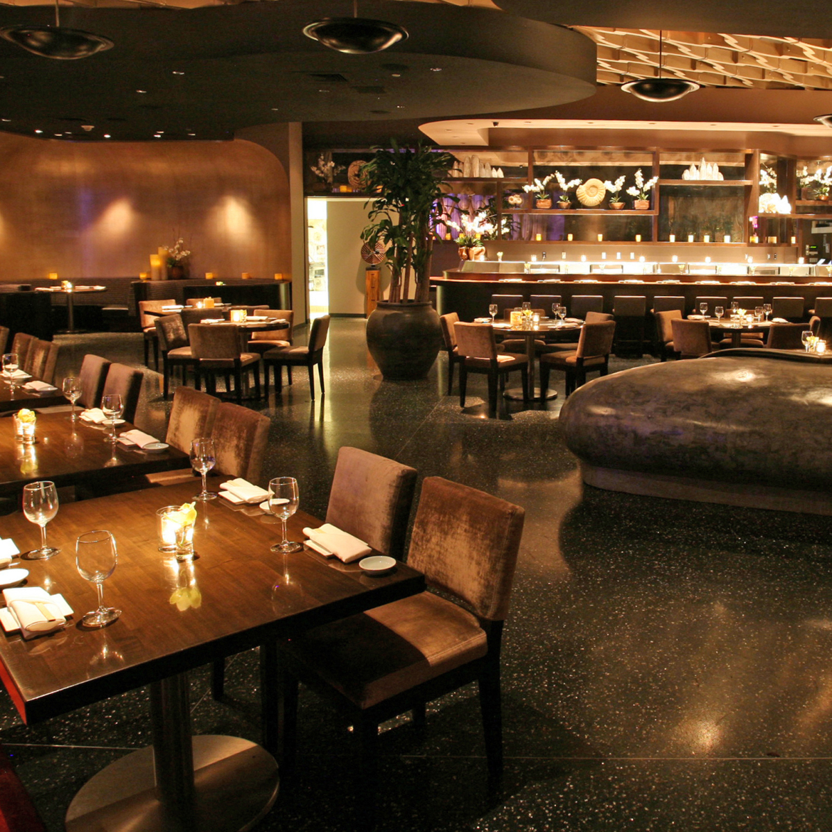 Cool Koi Restaurant And Lounge Las Vegas Nv 89109 Andrewgaddart Wooden Chair Designs For Living Room Andrewgaddartcom
