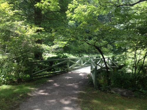 Hiking Story: Botanical Gardens