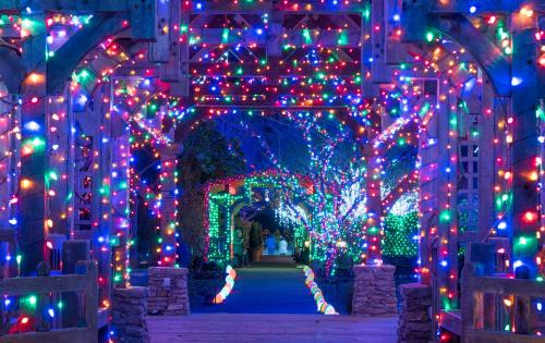 Top 8 Places to See Holiday Lights in Asheville, N.C.