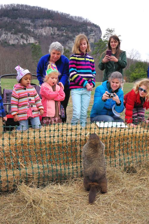 Groundhog Day at Chimney Rock State Park