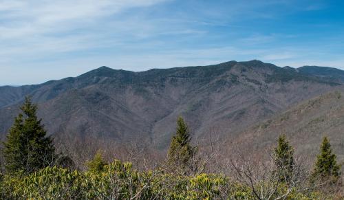Graybeard Mountain Trail Summit